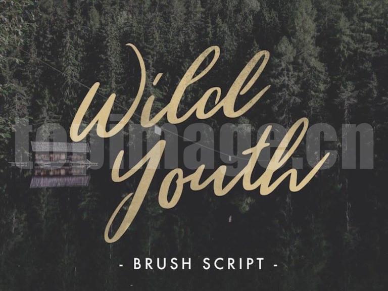 WildYouth手绘书法手写英文字体适合logo下载