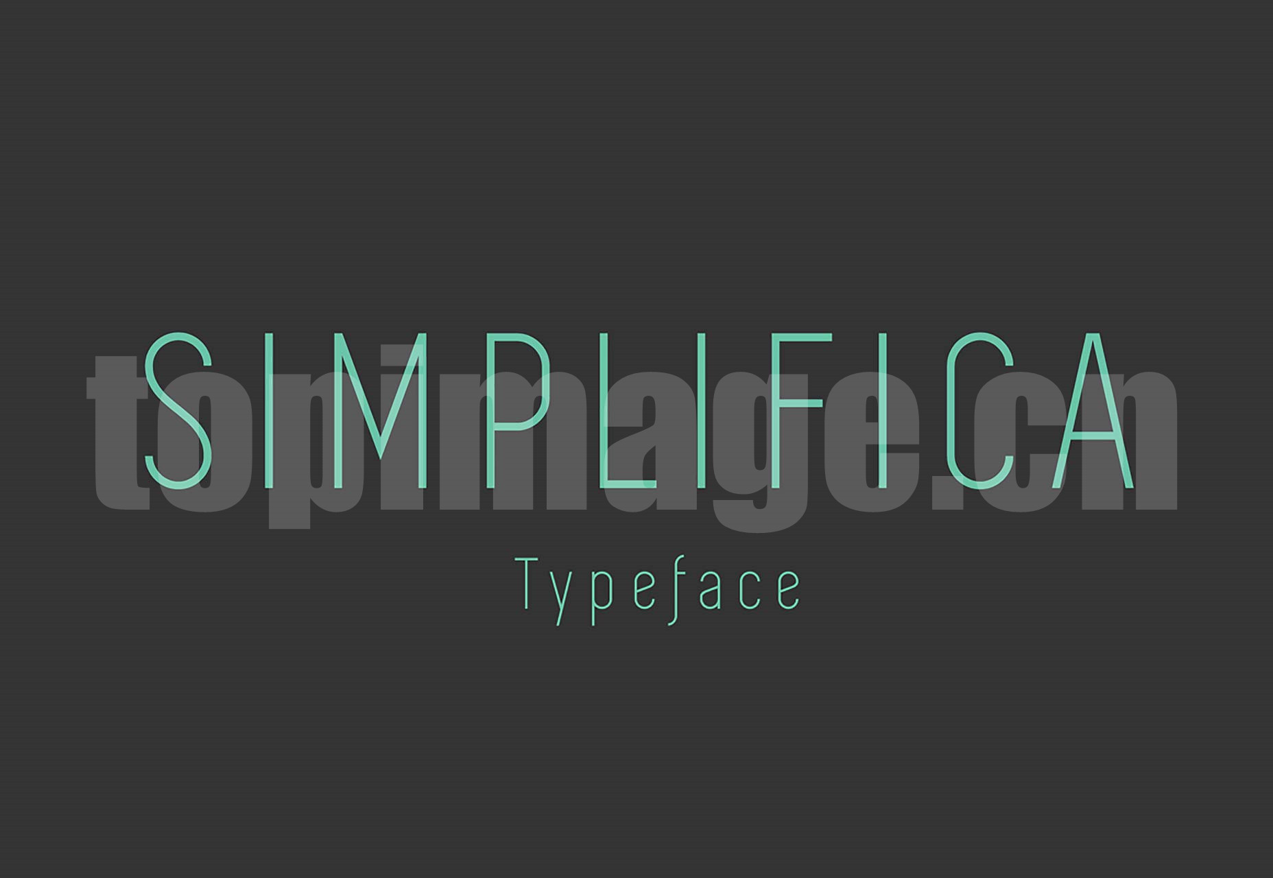 SIMPLIFICA Typeface 简洁纤细 英文字体 logo设计字体下载