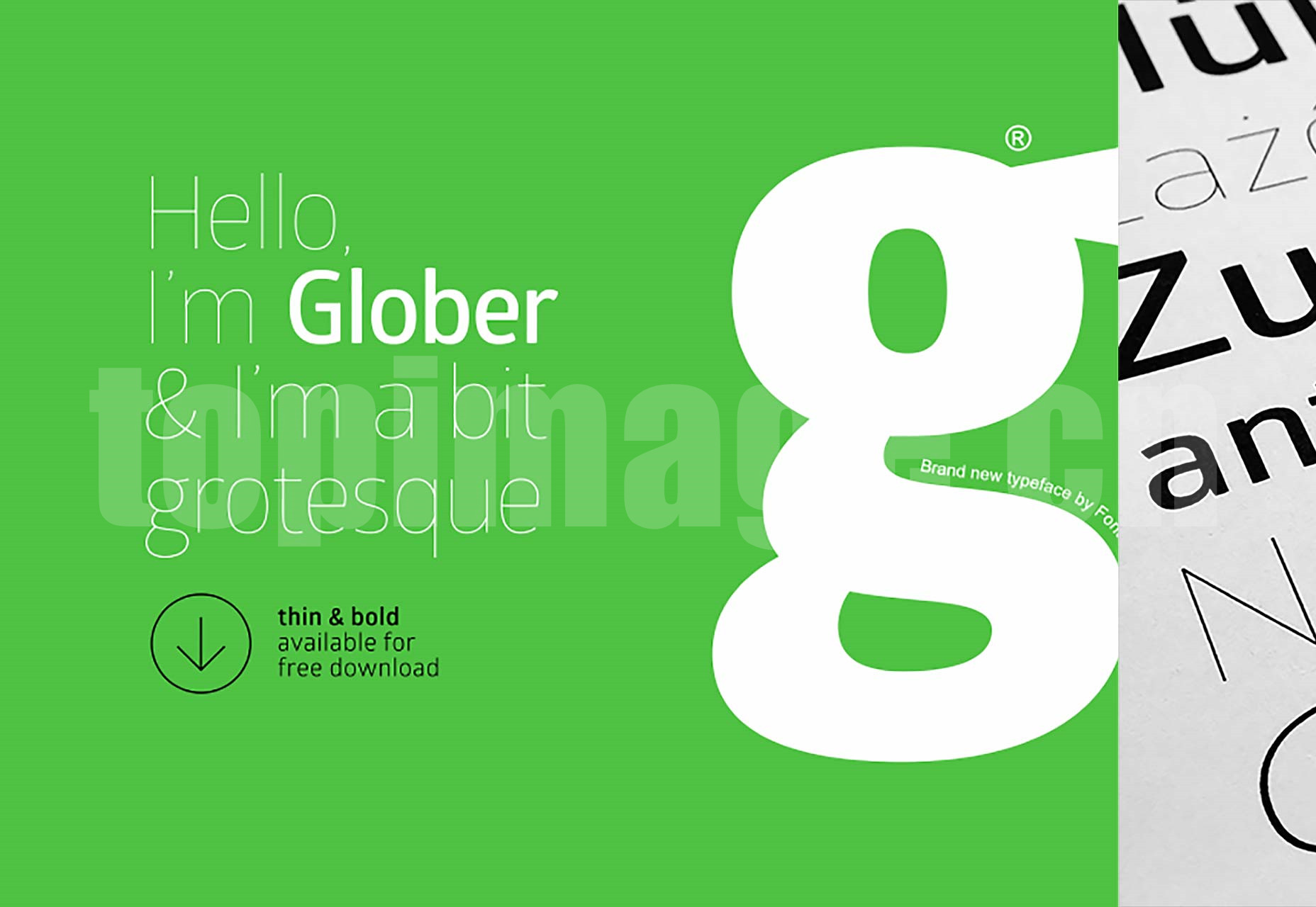 Glober海报创意 简洁纤细 logo英文字体下载