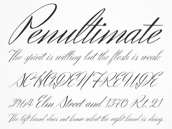 HerrVonMuellerhoff手写花体圆体英文字体下载