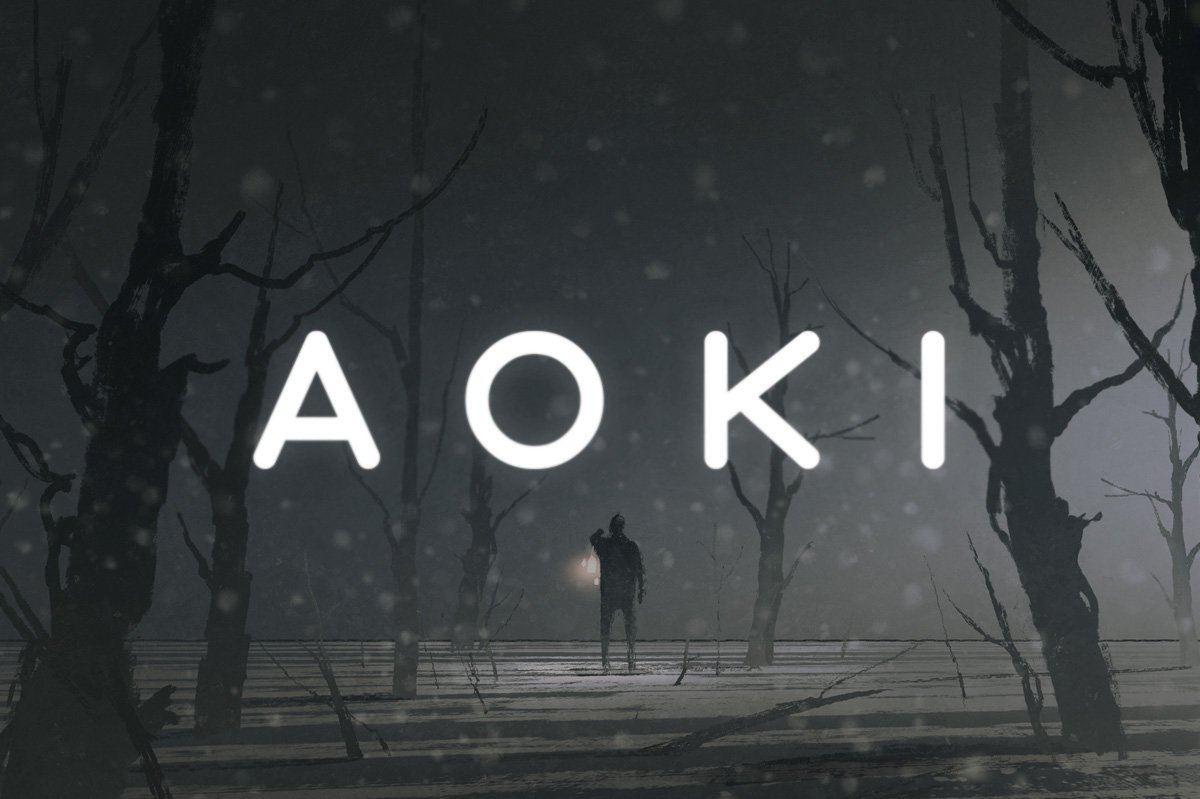 Aoki现代简约规则工整无衬线英文字体下载