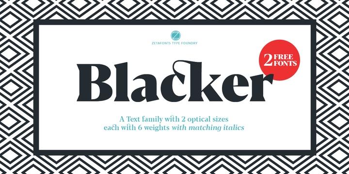 Blacker现代简约品牌logo衬线英文字体下载