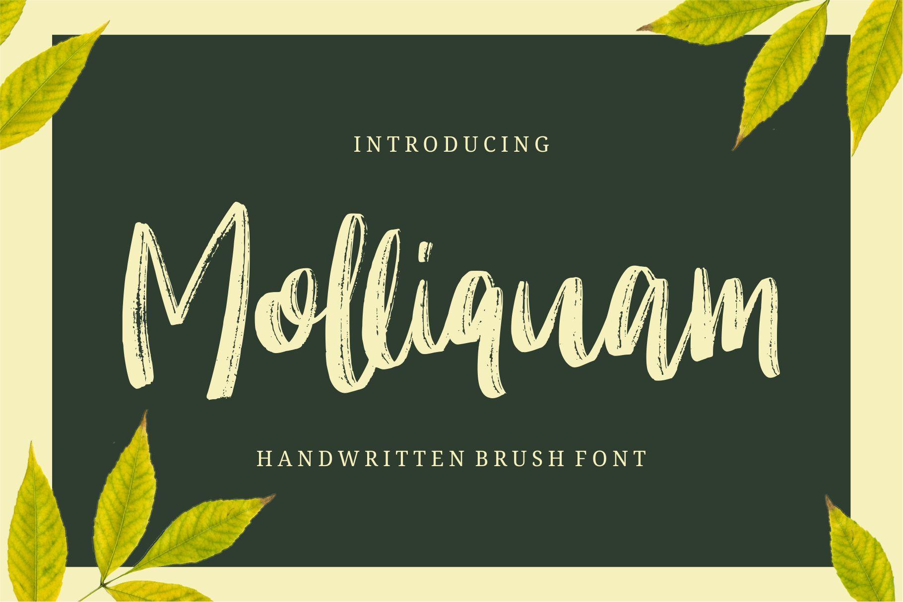 Molliquam手写书法笔刷连笔粉笔清新英文字体下载