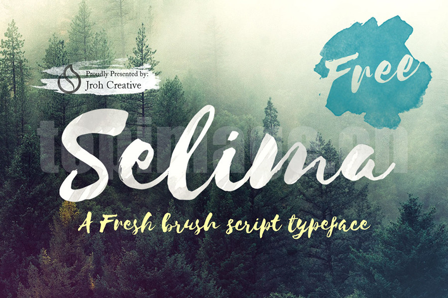 Selima 手绘英文字体书法英文下载