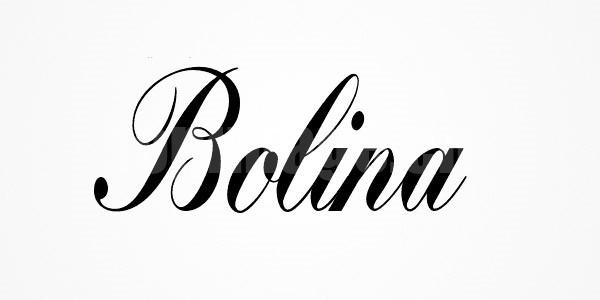 bolina时尚英文字体下载