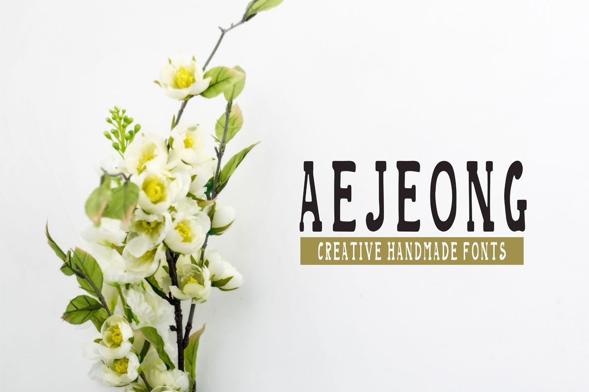 Aejeong手写衬线英文字体下载