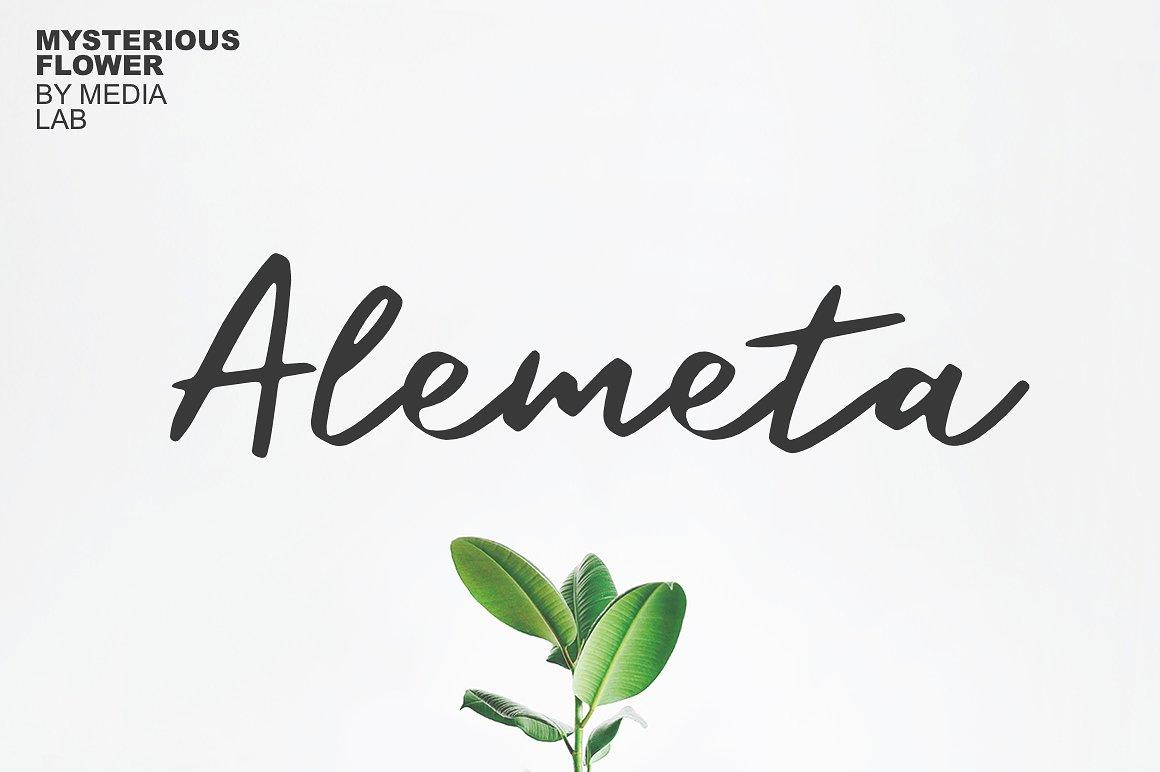 Alemeta手写简约时尚海报连笔英文字体下载