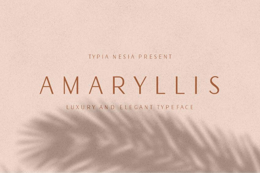 Amaryllis奢侈简约设计logo英文字体下载