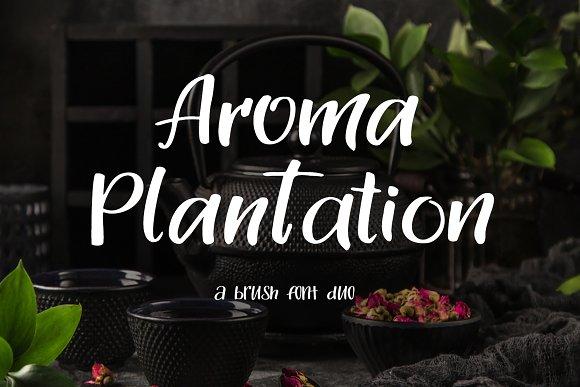 Aroma Plantation摄影海报手写英文字体下载