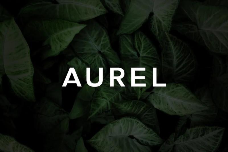 Aurel现代无衬线logo英文字体下载