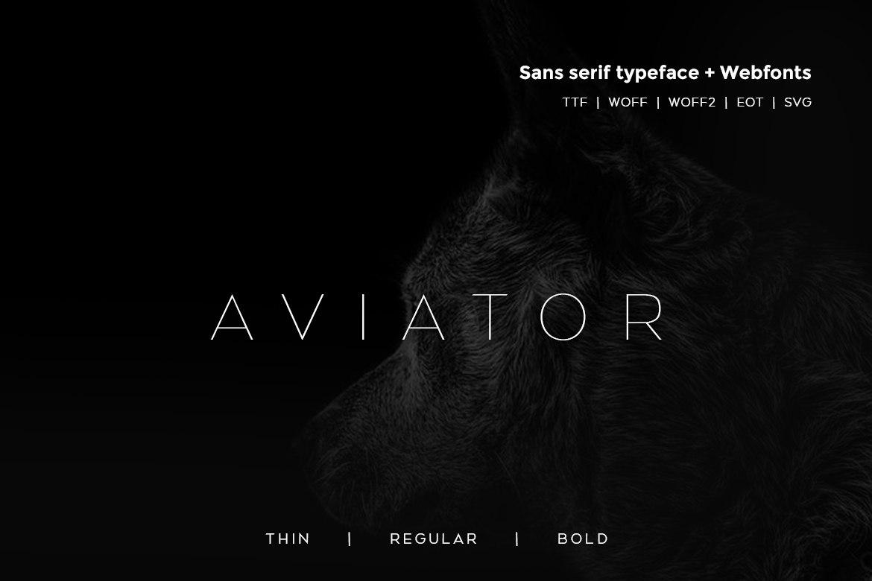 Aviator极简现代无衬线极细logo英文字体下载