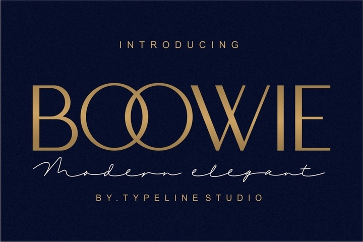 BOOWIE现代经典设计logo英文字体下载