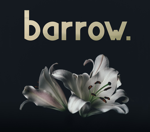 Barrow质感简约logo英文字体下载