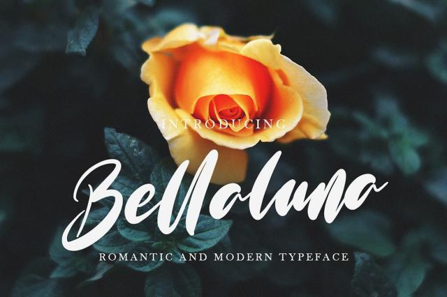 Bellaluna潮流街拍海报手写大气英文字体下载