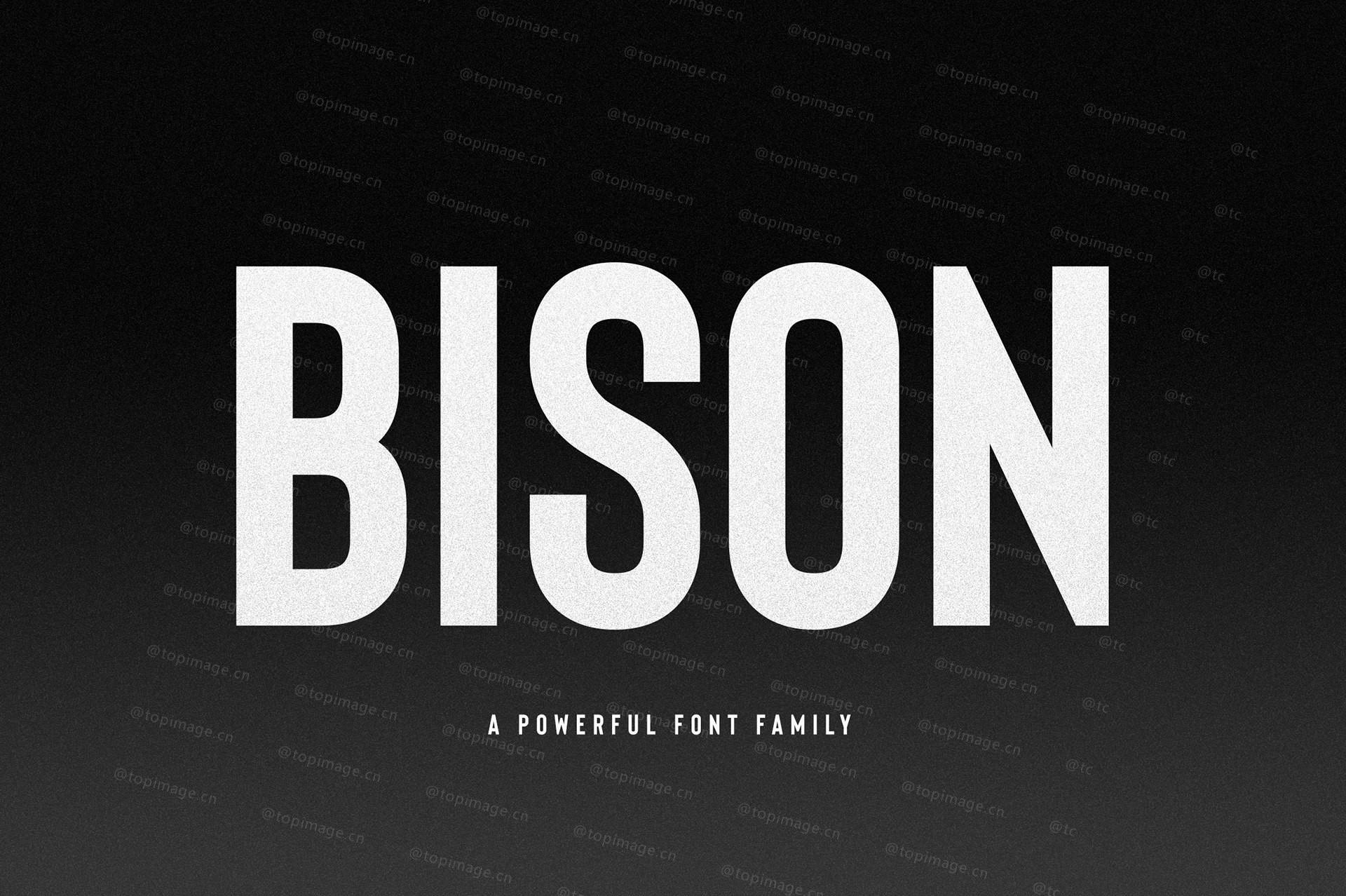 Bison现代有力量适合logo标志设计英文字体下载