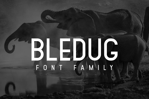 Bledug现代无衬线logo设计英文字体下载
