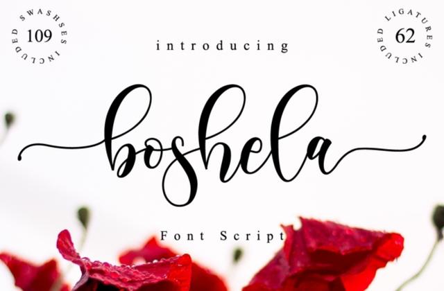 Boshela手写连笔飘逸好看的婚礼英文字体下载