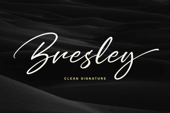 Bresley手写连笔电商签名艺术英文字体下载