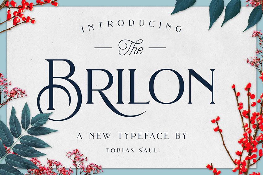Brilon个性衬线logo时尚英文字体下载