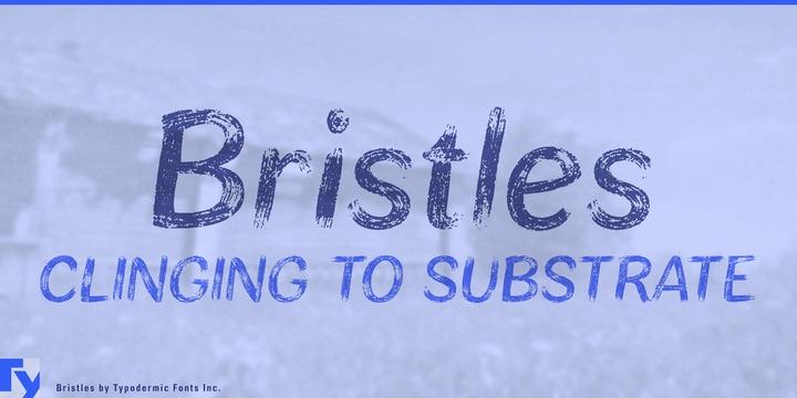 Bristles笔刷手写笔触纹理英文字体下载