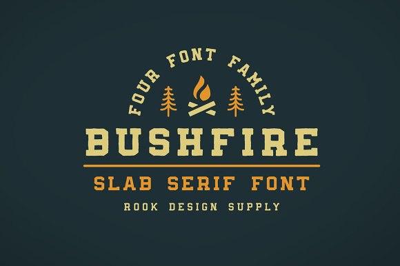 Bushfire等宽衬线英文字体下载