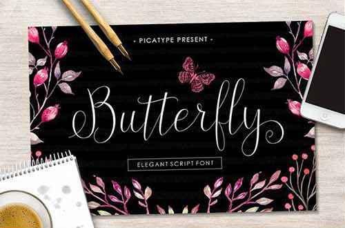Butterfly Script手写连笔花式英文字体下载
