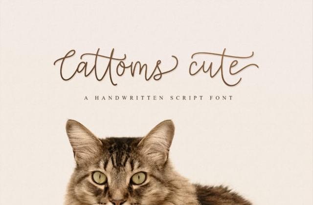 CattomsCute手写文艺签名连笔英文字体下载