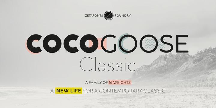 Cocogoose Classic现代简洁logo经典英文字体下载