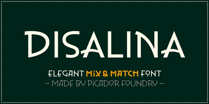 Disalina个性简洁logo名片英文字体下载