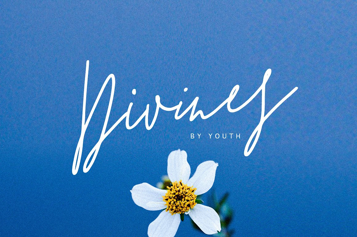 Divines纤细精美手写连体创意时尚海报英文字体下载