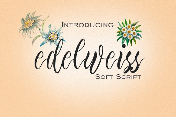 Edelweiss手写连笔经典英文字体下载