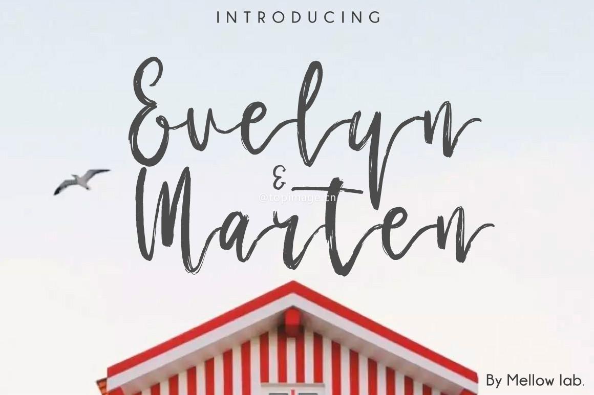 Evelyn&Marten手写笔刷创意海报英文字体下载