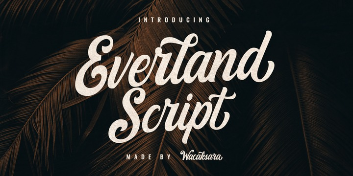 EverlandScript手写手绘包装英文字体下载