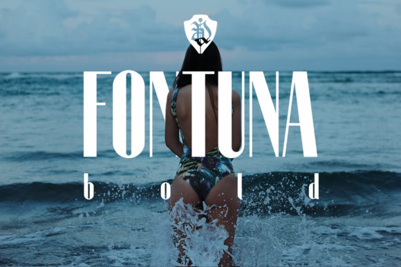 Fontuna现代无衬线logo运动英文字体下载