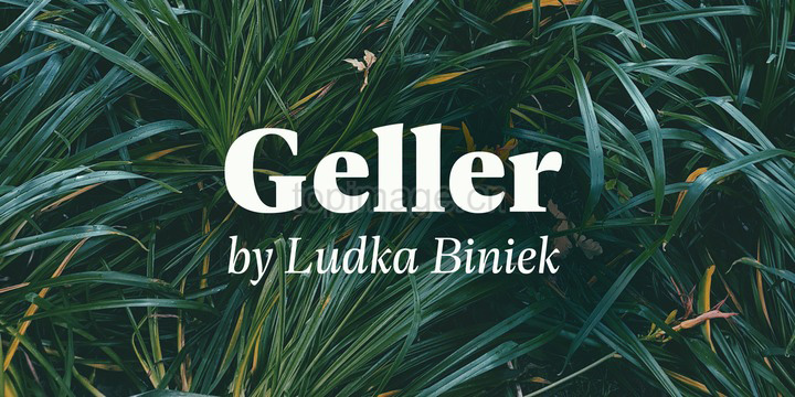 Geller大气稳重logo设计现代衬线英文字体下载
