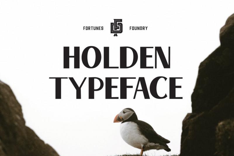 HOLDEN现代简洁logo设计英文字体下载