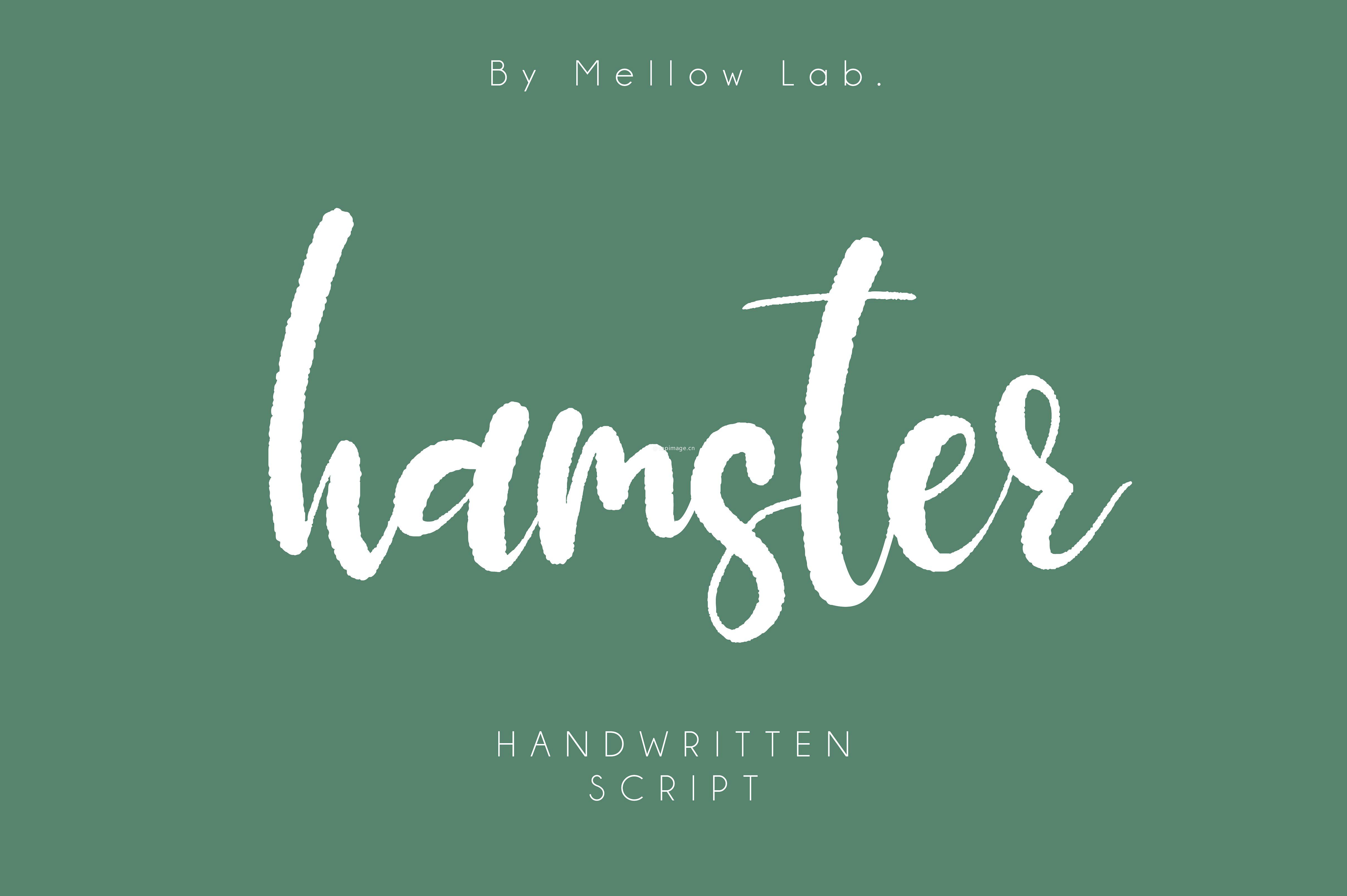 Hamster个性网站海报手写英文字体下载