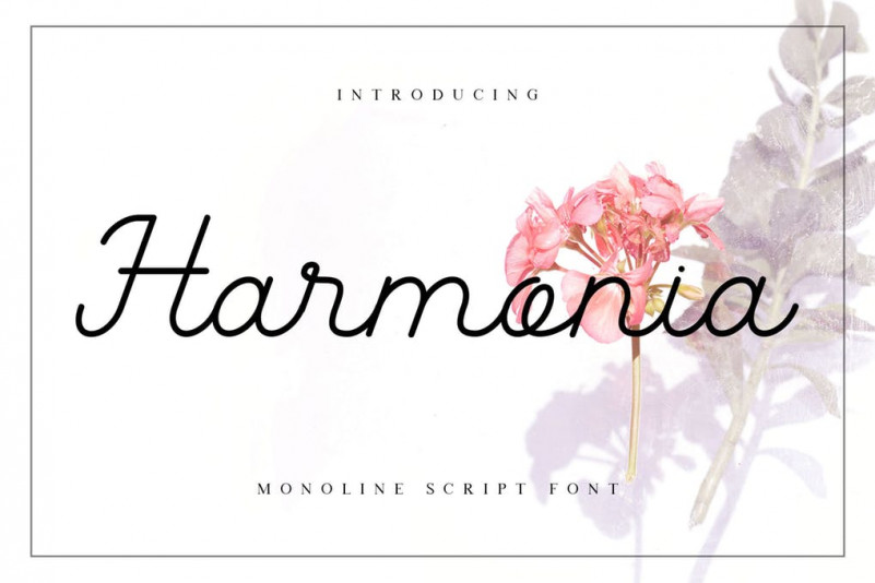Harmonia手写手绘连笔纤细签名网红英文字体下载