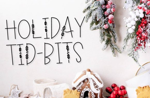 Holiday Bits 手写个性可爱英文字体下载