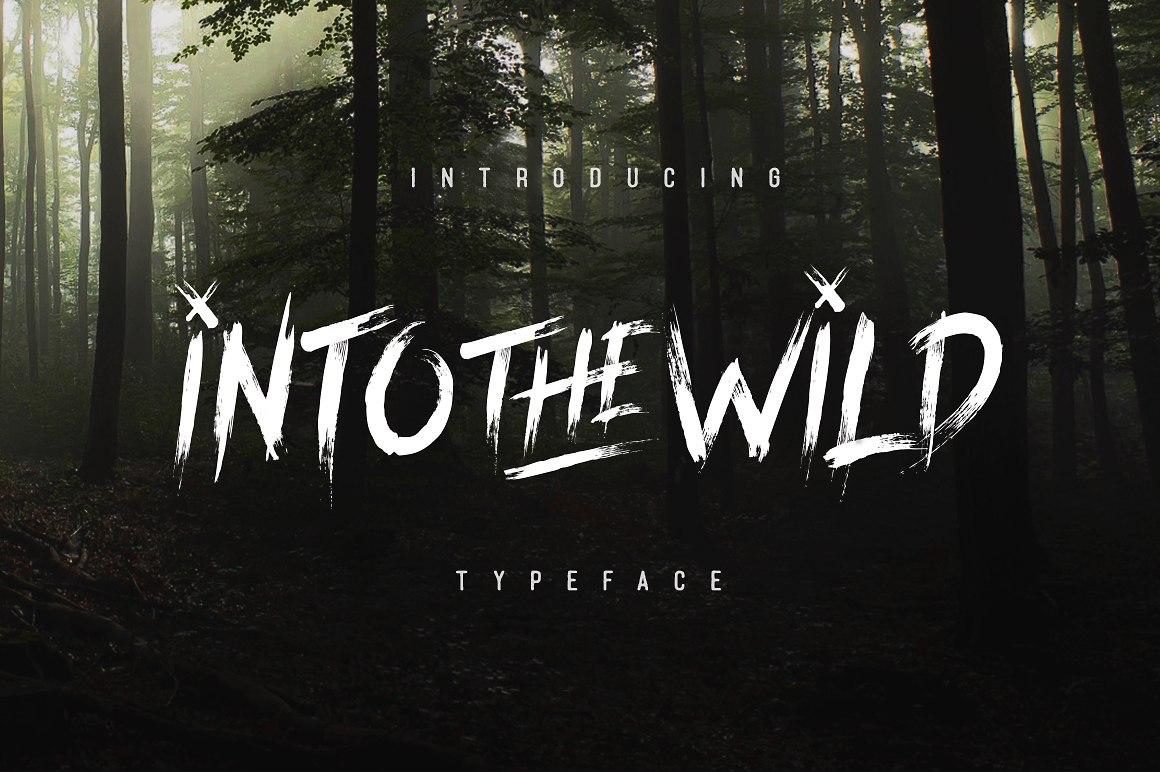 Into the Wild 笔触手写毛笔英文字体下载