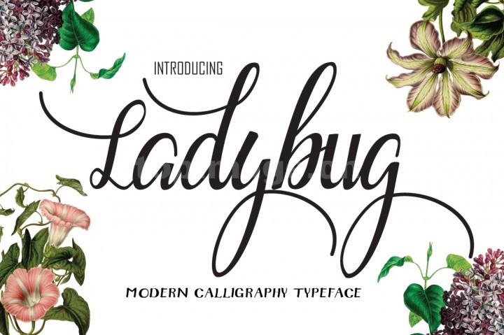 Ladybug连笔飘逸意大利圆体好看的手写英文字体下载