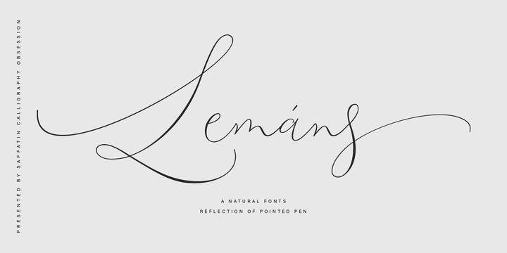 Lemans Pen Script手写签名艺术连笔英文字体下载