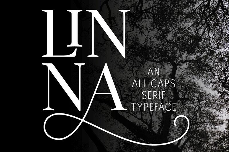Linna衬线logo创意英文字体下载