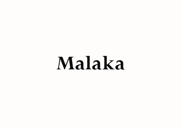 Malaka衬线复古平面排版设计英文字体下载