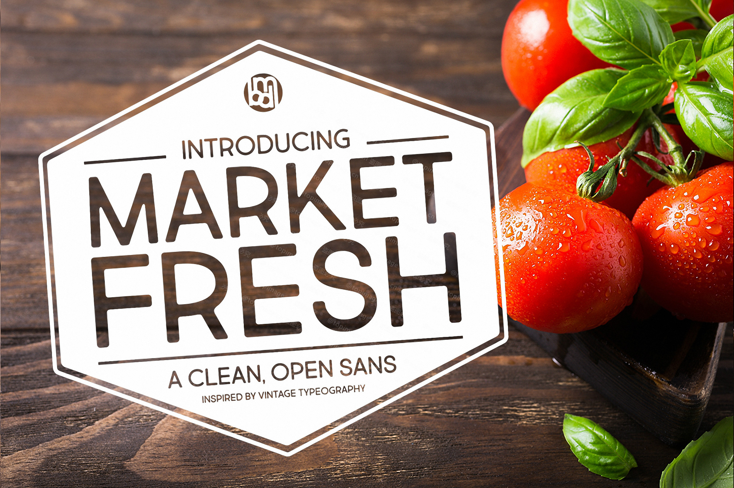 MarketFresh极简洁logo圆润英文字体下载