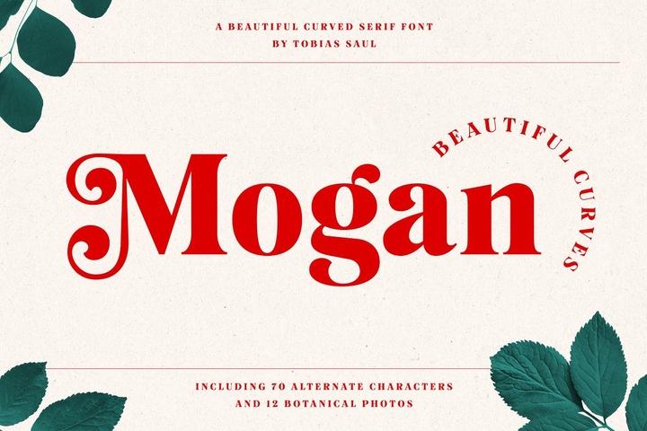 Mogan衬线复古美式英文字体下载