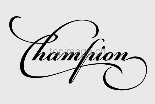 PFChampionScriptPro花体优美字形婚礼飘逸连笔英文字体下载