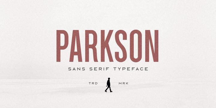 Parkson现代简洁logo名片英文字体下载