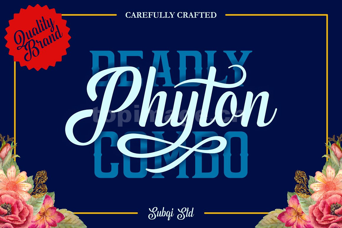 Phyton手写大气好看的适合logo连笔飘逸英文字体下载