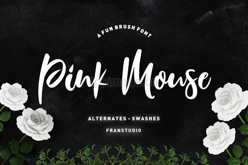 PinkMouseScript手写印刷摄影海报英文字体下载